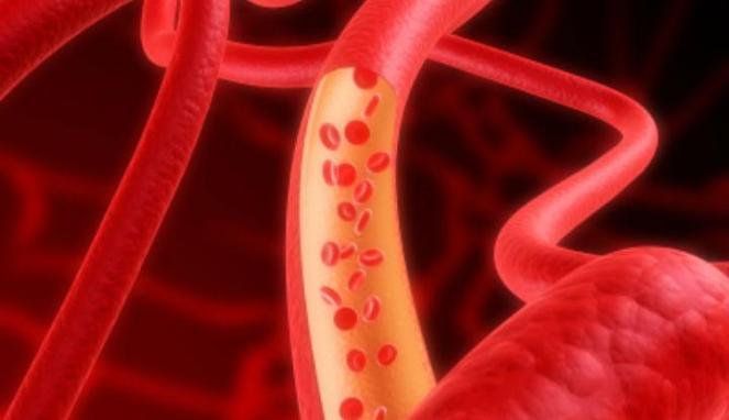 aliran-darah