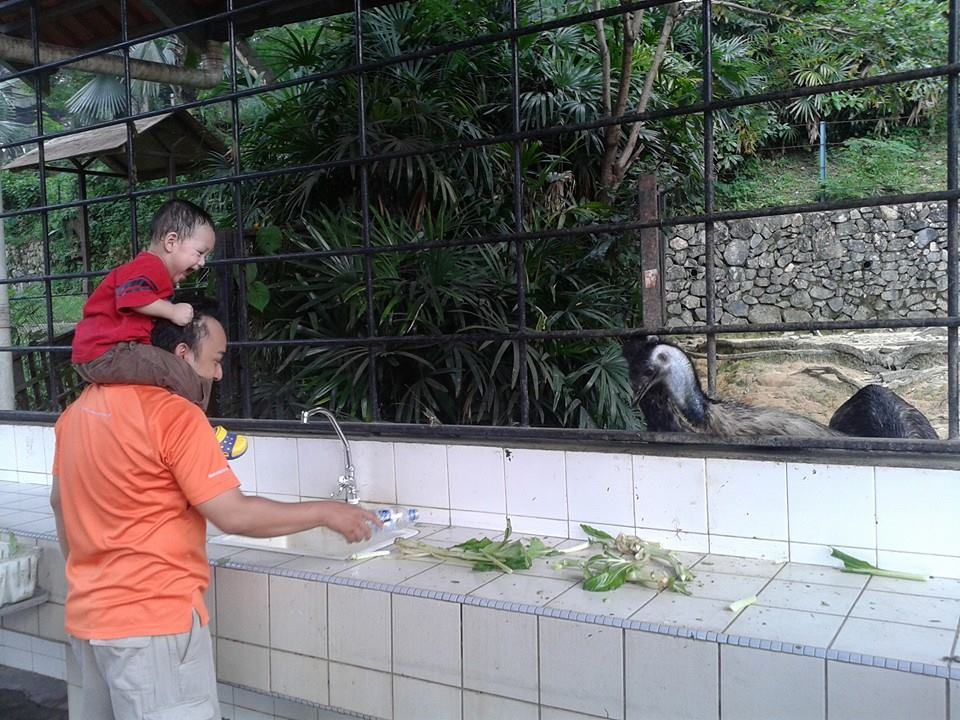 Ayah feeding style...
