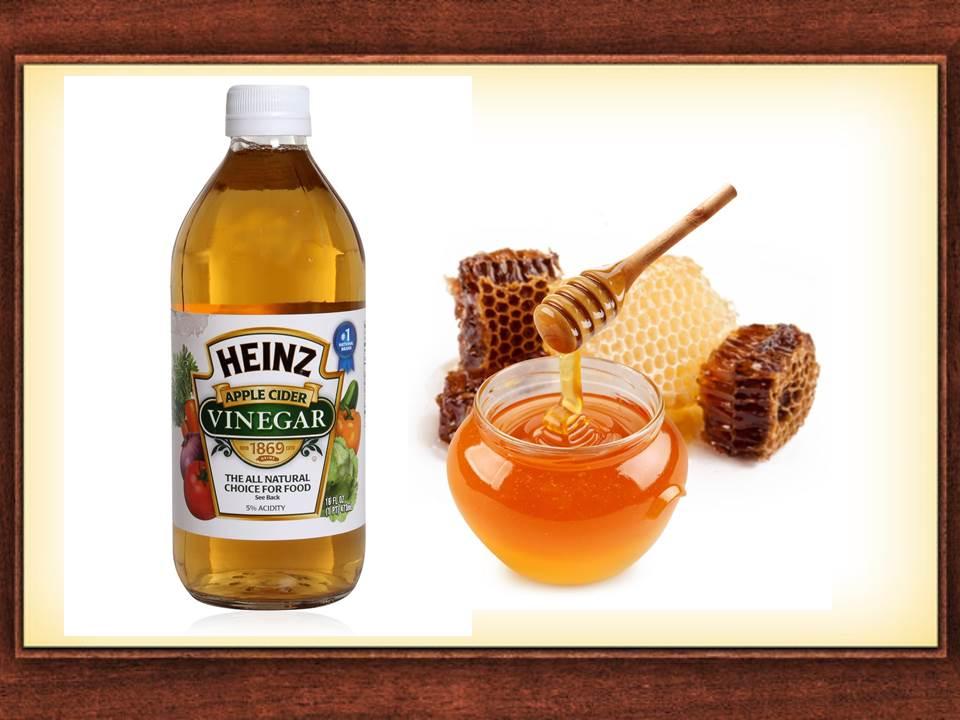 cuka dan madu