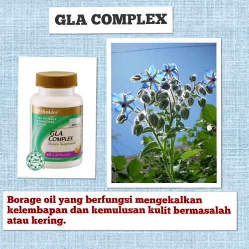 GLA BORAGE