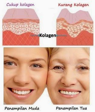 kesan-collagen-shaklee